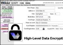 High-Level Data Encryption